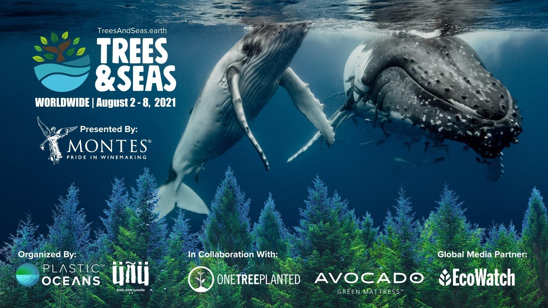 TREES-AND-SEAS_WEB-HOMEPAGE
